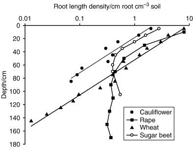 root length density
