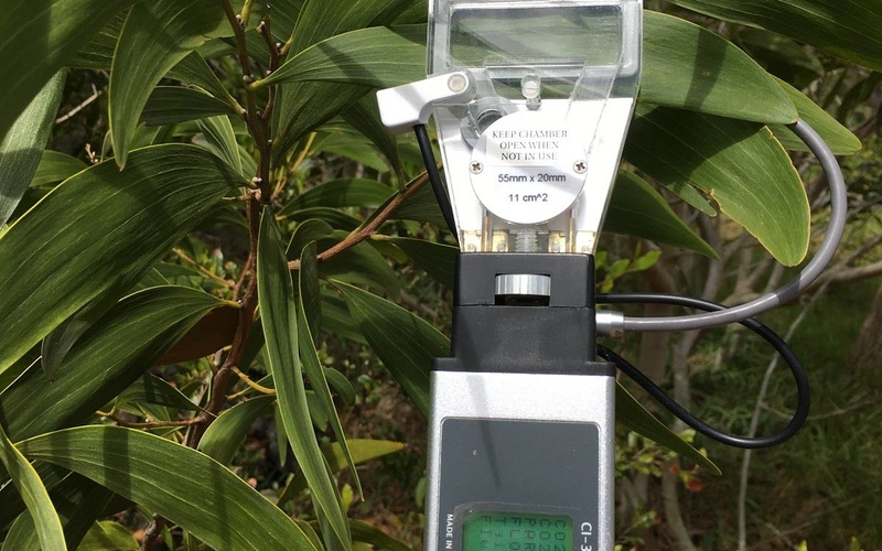Guest Post: Using Plant Science Tools to Monitor and Restore