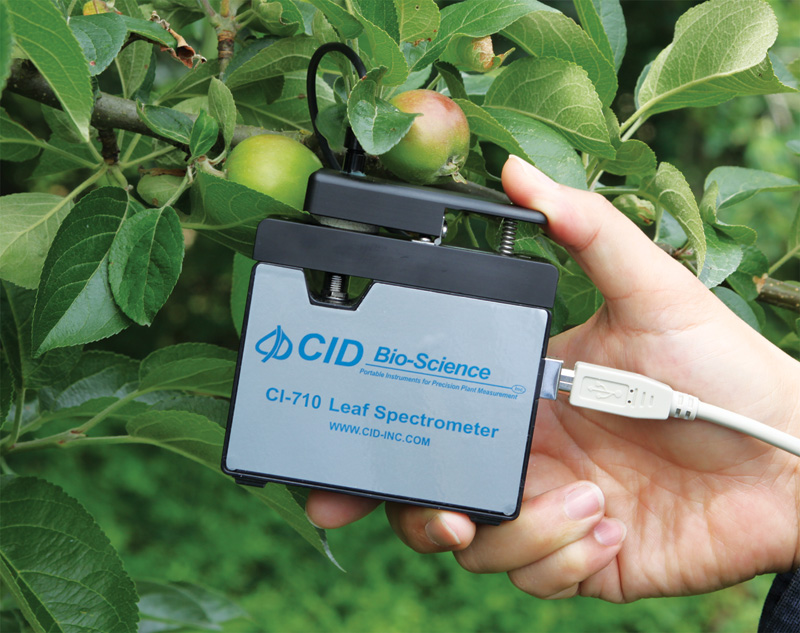 Ci 710 Miniature Leaf Spectrometer Tools For Applied